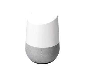 GA00341-NO - Google Home (Nordic)